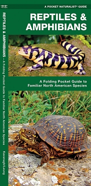 Reptiles and Amphibians - Field Guide